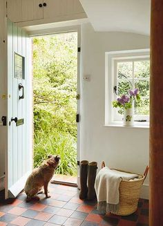 farmworker's country cottage open front door with dog