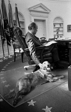 President Gerald Ford and his golden retriever, Liberty, in the Oval Office, November The president is reading and petting his dog at the same time. Gerald Ford and His Dog, Liberty. This image is available as a print. Us History, American History, American Pride, Famous Dogs, Famous People, Presidential History, Vintage Dog, Our President, American Presidents