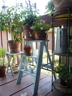 Indoor garden rent direct apartments for rent in nyc with no plant holders workwithnaturefo