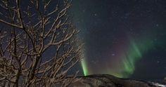 Auroras boreales desde Grøtfjord, Noruega | El Universo Hoy