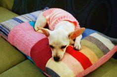 Como hacer una cama para perros reciclando sweaters
