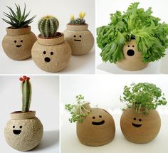 NamNam Ceramic Pots, Love Them! Great Ideas