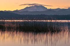Lago Di Varese E Monte Rosa  lake, mountain, january, lago, montagna, lago di varese, gennaio