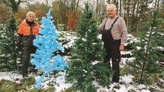 Künstliche Weihnachtsbäume im Test