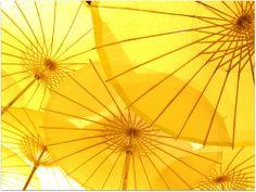 Umbrellas. Choose one - http://findgoodstoday.com/umbrellas