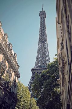 The Eiffel Tower(Paris) in the daytime...