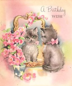 Kitten Mirror Flowers Vintage Birthday Card