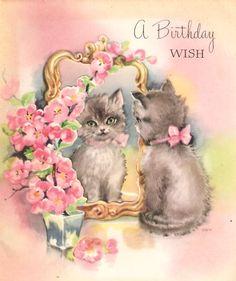 Kitten Mirror Flowers Vintage Birthday Card Cards Happy Flower