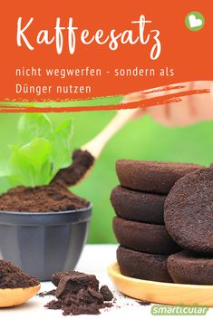 Kaffeesatz als hervorragenden Dünger verwenden Coffee grounds contain valuable nutrients that your plants will be happy about. Therefore, do not throw it away but use it as fertilizer. Container Flowers, Container Plants, Container Houses, Container Gardening Vegetables, Vegetable Garden, Planting Bulbs, Planting Flowers, Fall Planting, Gemüseanbau In Kübeln