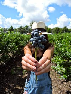 Blueberry Picking in Overalls • The Closet Dime