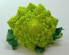 """You probably have seen it before, but this vegetable never ceases to amaze me. This is """"Chou Romanesco"""" cauliflower (more images an. Romanesco Broccoli, Chou Romanesco, Fractals In Nature, Spirals In Nature, Fibonacci Spiral, Autumn Garden, Patterns In Nature, Fractal Art, Fractal Images"""