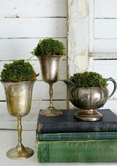 Greenery in Your Space Using Greenery in Your Space. Vintage containers and moss. A creative way to decorate with silver!Using Greenery in Your Space. Vintage containers and moss. A creative way to decorate with silver! Home Decor Colors, Colorful Decor, Home Decor Accessories, Decorative Accessories, Diy Home Decor, Interior Colors, Interior Design, Casas Shabby Chic, Diy Crafts