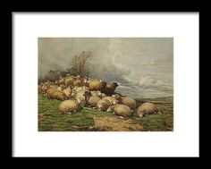 Thomas Sidney Cooper Framed Print featuring the painting Landscape with a Flock of Sheep by MotionAge Designs Fine Art Prints, Framed Prints, World Famous Artists, Vintage Travel Posters, Frame Shop, Flocking, Clear Acrylic, Art Images, Landscape Paintings