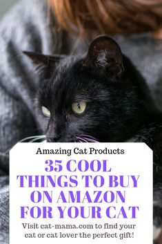 Not sure what to buy that special cat (or cat lover) in your life? This post lis… Not sure what to buy that special cat (or cat lover) in your life? This post list 35 of the coolest things to… Continue Reading → Crazy Cat Lady, Crazy Cats, Diy Accessoires, Mama Cat, Super Cat, Owning A Cat, Cat Photography, Cat Supplies, Cool Things To Buy