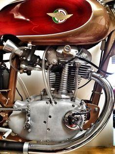 Moto Ducati, Ducati Motorcycles, Vintage Motorcycles, Cars And Motorcycles, Ducati Classic, Classic Bikes, Stingray Corvette, Moped Scooter, Gentlemans Club