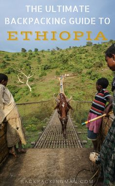 Ethiopia travel A guide to backpacking in Ethiopia covering all the country plus tips on costs, health, safety, itineraries, and more. Ethiopia Travel, Africa Travel, Backpacking For Beginners, Backpacking Tips, Addis Abeba, Wallpaper Collage, Road Trip, Safari, Travel Alone