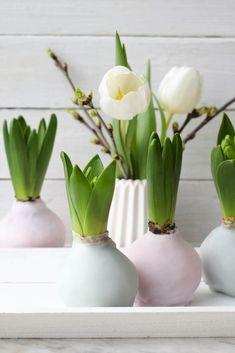 Early Spring, New Beginnings, Bunt, Vase, Flowers, Plants, Gardening, Home Decor, Winter
