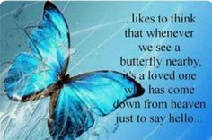 Grandpa and I like to think that whenever we see a butterfly nearby, that its KK and she has come down from Heaven just to say hello.We love you Kayla and miss you so much --db Blue Butterfly Wallpaper, Flower Wallpaper, Butterfly Quotes, Butterfly Kisses, Butterfly Pictures, Butterfly Art, Butterfly Colors, Simple Butterfly, Morpho Butterfly