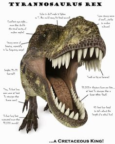 A New Science Project & How to Get a T-Rex Poster