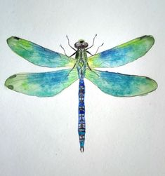watercolor dragonfly painting Dragonfly Drawing, Dragonfly Wall Art, Dragonfly Painting, Butterfly Watercolor, Watercolor Animals, Watercolor And Ink, Watercolor Dragonfly Tattoo, Watercolor Paintings, Watercolours