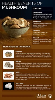 Mushroom Health Benefits for Immunity and the NeuroEndoMetabolic Stress Response Health Benefits Of Mushrooms, Mushroom Benefits, Coconut Health Benefits, Nutrition Guide, Health And Nutrition, Health Tips, Smart Nutrition, Ways To Stay Healthy, Healthy Life