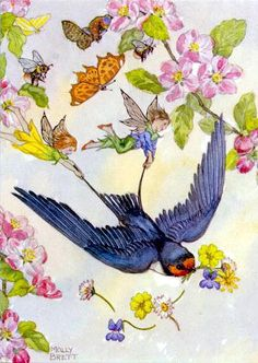 Swallow, fairies, bees and moths, and flowers by Molly Brett