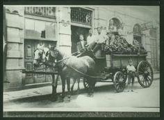 1920 - Vendedores de banana na rua da Mooca.