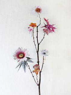 Flower Constructions, collages with cutouts from flowers pictures and pressed flowers, by Anne ten Hd Flowers, Long Flowers, Real Flowers, Dried Flowers, Flower Collage, Flower Art, Zentangle, Plant Painting, Watercolor Painting