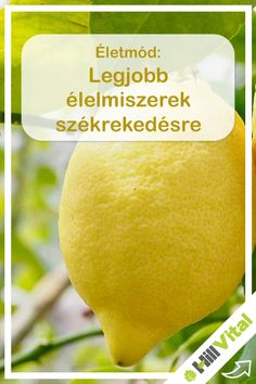 Cantaloupe, Vitamins, Mango, Medical, Fruit, Healthy, Recipes, Food, Enterprise Application Integration