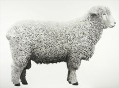 charcoal on primed linen. by jonathan delafield cook.