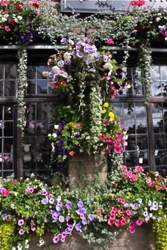 English flower garden, flowers around the windows Love Flowers, Beautiful Flowers, English Flower Garden, English Country Gardens, My Secret Garden, Dream Garden, Outdoor Gardens, Outdoor Pool, Outdoor Spaces