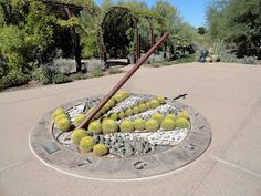 Working my way through the hundreds of photos I snapped last October, at the Desert Botanical Garden in Phoeniz, AZ, this one stood out. Dur...