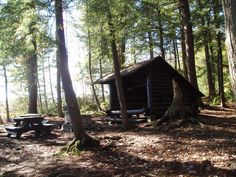 A lean-to at Alger Island Campground - NYSDEC Campgrounds