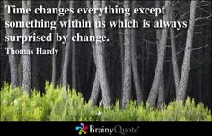 Time changes everything except something within us which is always surprised by change.  - Thomas Hardy