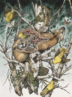 "Lauren Marx Explores Nature's Beauty and Cruelty in ""American Wilderness"" | Hi-Fructose Magazine"