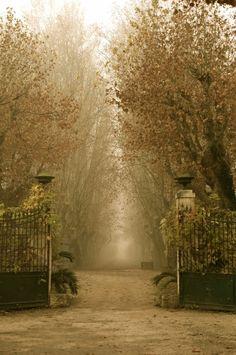 Mystical Entry, Arles, Provence, France photo via beckee