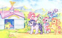 Ponyland Tours