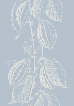 Cole & Son - Frontier - Cocoa - 89-11045