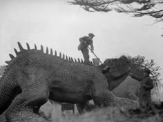 Dinosaur cleaning day at the Crystal Palace c.1927  The Crystal Palace dinosaur sculptures, the first of their kind anywhere in the world.