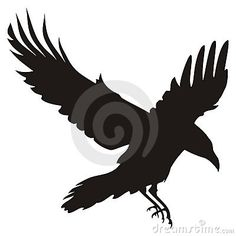 So I am thinking this raven with a small bouquet of daisies, with them falling to the ground, on my shoulder down the curve