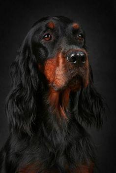 What a handsome boy!