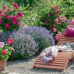 Lavendel ist ein echter Tausendsassa: Der mediterrane Halbstrauch hat nicht nur einen hohen Zierwert, sondern lässt sich auch zu allerlei Köstlichkeiten verarbeiten. Hier stellen wir Ihnen ein paar schöne Ideen vor.