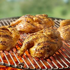 Try grilling Cornish hens instead of chicken and use Montreal Chicken Seasoning to boost the flavor.