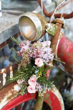 rusty bicycle with flowers ~~ from interior divine: colorful  summery scenes