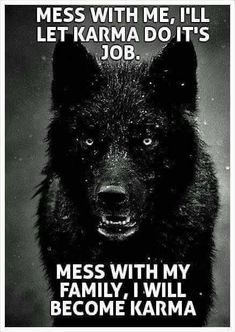 Mess with me and I will let karma do it's job. Mess with my family and I become karma. (ALK: 'family' can be anyone I vaguely care about whom I feel is currently defenceless against someone cruel! Motivational Quotes, Funny Quotes, Inspirational Quotes, Humor Quotes, Funny Humor, Quotes On Karma, Qoutes, Be Wolf, Citations Film