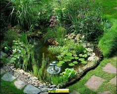 Ambiance de bassin de jardin végalisée