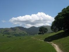 Besides Diablo Foothills, Castle Rock Park is bordered by Mt. Diablo, the huge mountain you see from the SF Bay!