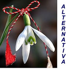 Martisor, A Spring Welcoming Romanian Tradition 8 Martie, Happy Spring, New Age, Plant Hanger, Congratulations, Diy And Crafts, Traditional, Christmas Ornaments, Wallpaper