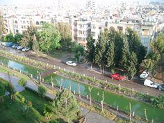 Nature homs syria