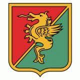 AC  TERNANA  TERNI  old logo Soccer Logo, Football Soccer, Jersey Atletico Madrid, Fifa, Old Logo, Ferrari Logo, Badges, Football Squads, Everything